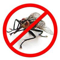 Против насекомых